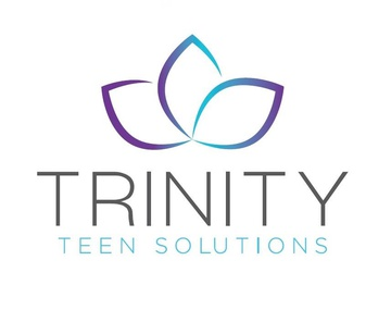Trinity Teen Solutions logo